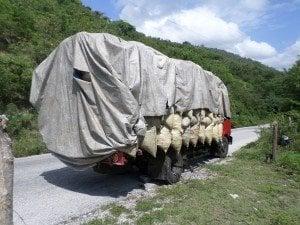 Camión transporta decenas sacos carbón a Santiago