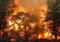 Loma Miranda, incendio!!!???