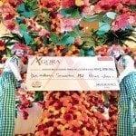 Árbol de la Esperanza se llena de flores en solidaridad