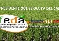 FEDA auxilia asociaciones agropecuarias