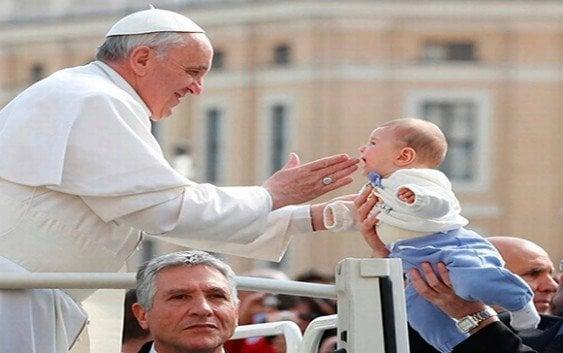 Papa lamenta destrucción de bosques para sembrar soja