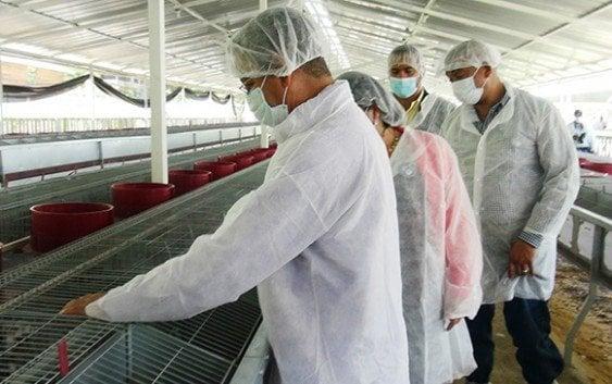 FEDA entrega modernísimas granjas de conejos