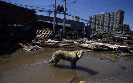 Alerta de tsunami en Japón tras el sismo en Chile