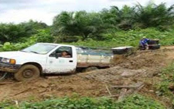 Reclaman reconstrucción vías zonas agrícolas y cafetaleras