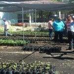 Realizan levantamiento en zonas cultivo de uva