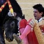 Este toro se vengó los asesinatos de esta bestia «humana»