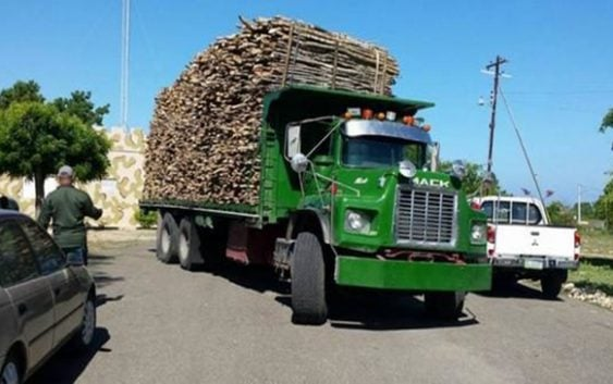 Cesfront ocupa camión cargado de madera en Manzanillo