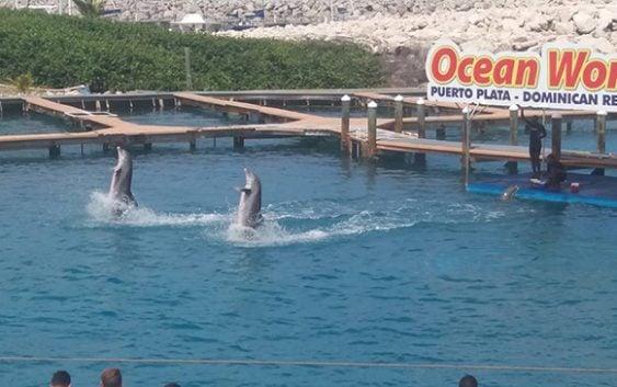Ocean World comparte con comunicadores ofertas 13 aniversario