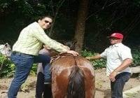 Parque incorpora paseo a caballo como parte de sus atractivos