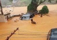 Sobrepasan los 400 muertos por avalancha de lodo en Sierra Leona; cientos desaparecidos; Vídeo