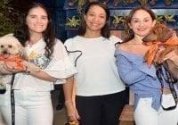 Fundación Doggie House y González Cuesta, con Tito's Vodka se unen a favor de los animales