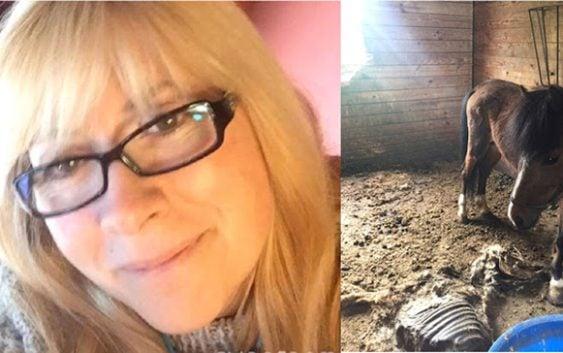 Crueldad: Apresan ex policía por dejar morir de hambre 11 caballos