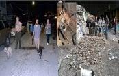 Batida contra millones de ratas en Nueva York con Perros Terrier; Vídeo