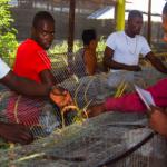 ¿Tiene usted idea del problema de la migración haitiana?