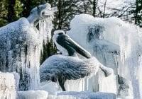 Tormenta de nieve deja 24 muertos en Europa; En Bruselas y Ámsterdam decenas de vuelos cancelados