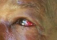 Ignominia: Qué pasó con el pelafustán que le propinó golpiza a señora de 75 años