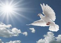 No tenemos pena de muerte…!!! Delincuente asesina hijastro de un año en Sabana Perdida
