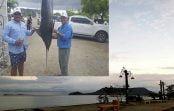 Todo listo para el XLVI Torneo de Pesca al Marlín Azul del Club Náutico de Monte Cristi