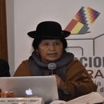 Apresan a la responsable del fraude en Bolivia, la presidente del Tribunal Superior Electoral