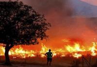 España: incendios provocan 3,500 evacuados y 10 mil hectáreas quemadas; Más de 400 militares y bomberos trabajan