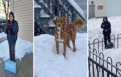 Tormenta de nieve deja 47 muertes en USA: Dominicanos afectados proceden a limpiar; Vídeos