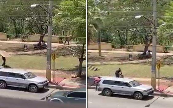 Denuncia haitianos construyen choza en parque de la Avenida Ecológica frente a Torre del Farallón