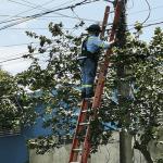 Edesur realiza plan mantenimiento preventivo por inicio en pocos días temporada ciclónica