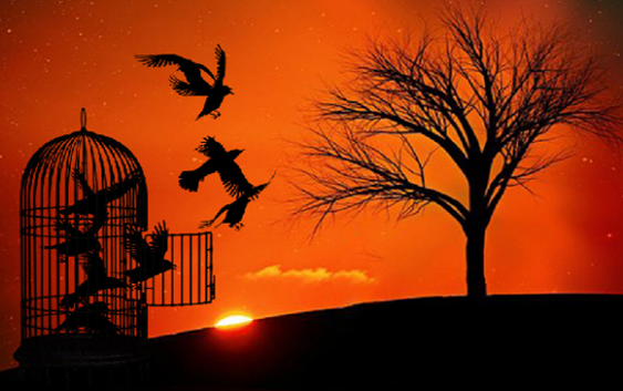 La Libertad, composición de la semana